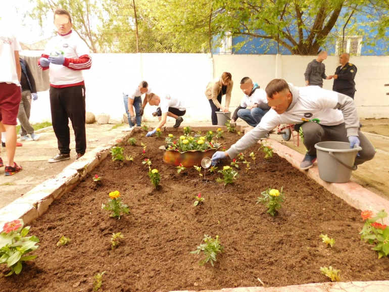 Gardening and sport games in Aiud